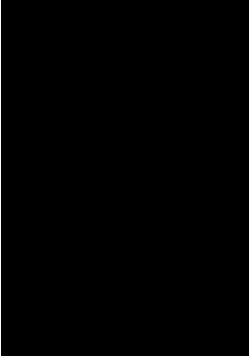 logotipo_idysmad